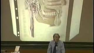Schwermetalle und ihre Wirkung auf die Gesundheit - Dr. Klinghardt 1998